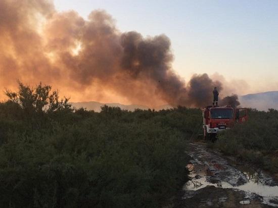 Υπό έλεγχο η πυρκαγιά στη Θράκη, μετά από ολονύκτιες προσπάθειες