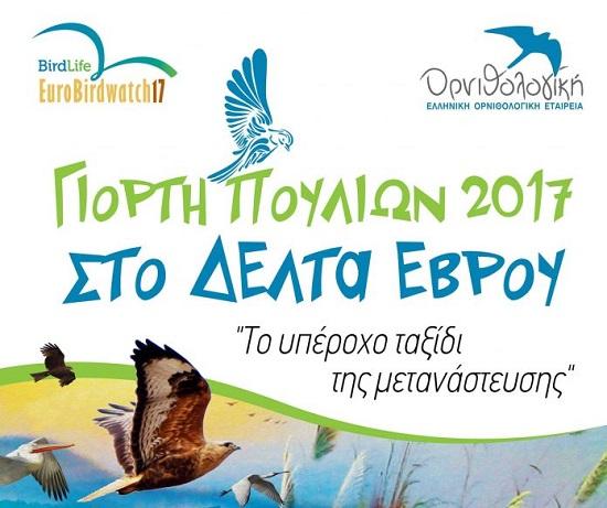 Περιβάλλον: «Πανευρωπαϊκή Γιορτή Πουλιών 2017» στο Δέλτα του Έβρου!