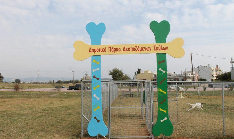 Πάρκο Δεσποζόμενων Σκύλων λειτουργεί πλέον στην Αλεξανδρουπολη