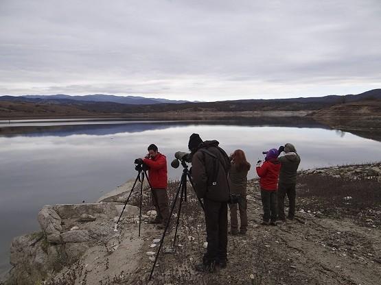 Μεσοχειμωνιάτικες καταγραφές υδρόβιων ειδών ορνιθοπανίδας στο Εθνικό Πάρκο Οροσειράς Ροδόπης