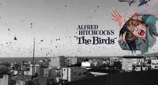«Τα πουλιά» πέρασαν από την Αλεξανδρούπολη και την έκαναν να μοιάζει με ταινία του Χίτσκοκ