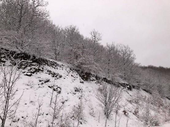 Μένει για λίγο ακόμα στον Έβρο η «Ιοκάστη» – Χειμερινό το σκηνικό του καιρού