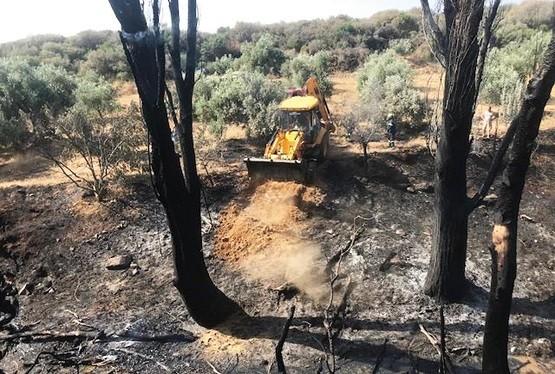 Πολλές οι πυρκαγιές εξαιτίας ανθρώπινης αμέλειας στη Ροδόπη