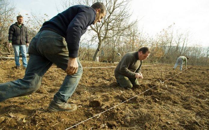 Σε απόγνωση βρίσκονται οι αγρότες στο Ν. Έβρου