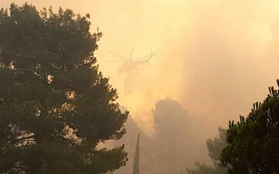 120 πυροσβέστες από την ΑΜΘ όλη τη νύχτα στην πυρκαγιά του Έβρου