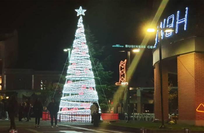 Καταστροφή του Δέντρου καταγγέλλει ο Δήμος Ξάνθης