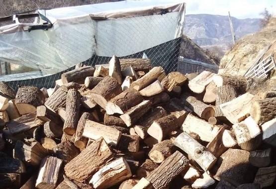 Καυσόξυλα στο Δήμο Μύκης με χορηγία της Καπνοβιομηχανίας JTI