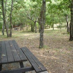 Eγκατάσταση συστήματος έγκαιρης ανίχνευσης πυρκαγιών στο δάσος Δαδιάς-Λευκίμης-Σουφλίου