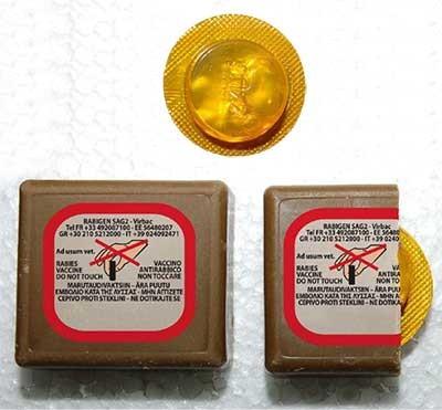Εναέρια ρίψη εμβολιαστικών «δολωμάτων» για την λύσσα στην ΠΑΜ-Θ