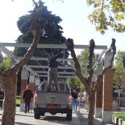 Ξάνθη: Ξεκίνησε το στήσιμο της «γειτονιάς» – Έναστρο «σεντόνι» στον κεντρικό δρόμο και «επιβλητικό» δένδρο 15 μέτρων στην «καρδιά» της πόλης