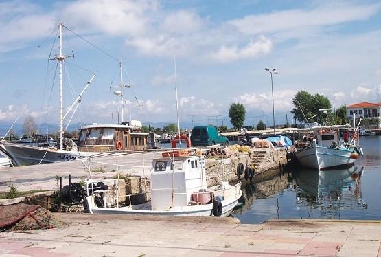 Ορθώνουν ανάστημα οι αλιείς της Ροδόπης: «Ήρθαν τα άγρια να διώξουν τα ήμερα;»