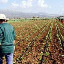 Xρηματικά βοηθήματα για τρίτεκνες-πολύτεκνες αγρότισσες
