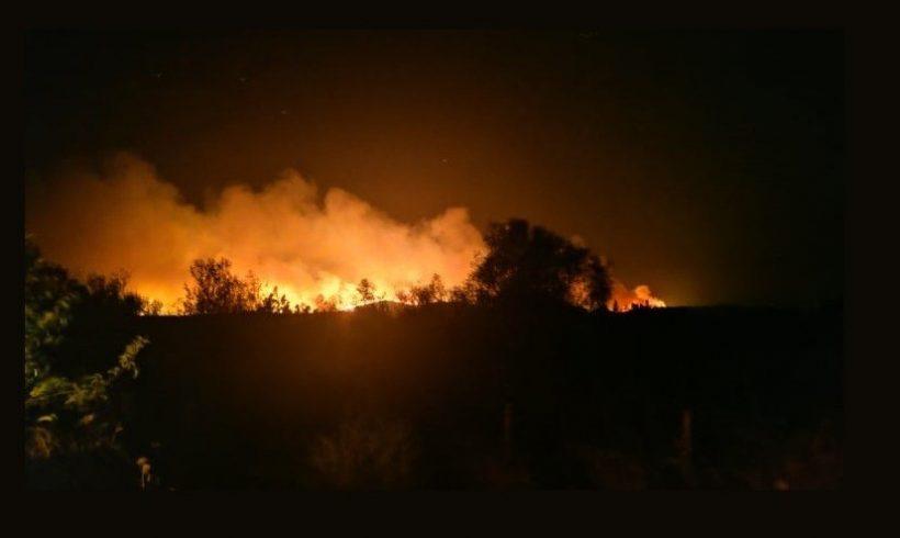 Αλεξανδρούπολη: Ολονύχτια μάχη με τις φλόγες