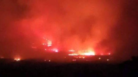 Ερευνούν τα αίτια των 15 πυρκαγιών στον Έβρο
