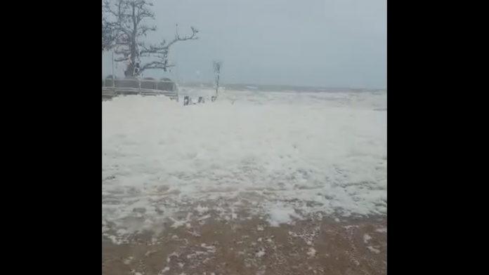 Τι είναι το φαινόμενο «Καπουτσίνο» που εμφανίστηκε στις παραλίες της Αλεξανδρούπολης