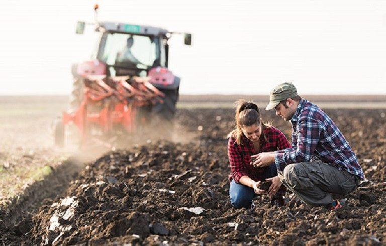 Σε πλήρη εξέλιξη η απογραφή γεωργίας – κτηνοτροφίας