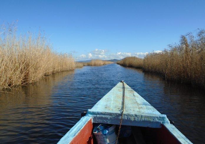 Δέλτα Έβρου: Οι ερασιτέχνες ψαράδες πρέπει να βάλουν πινακίδες στις μπλάβες τους!