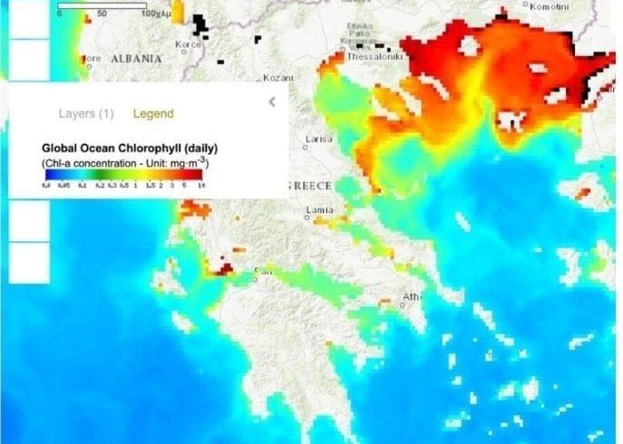 ΓΕΩΤΕΕ Θράκης: Αυτή είναι η εξήγηση για την «πρασινίλα» στις παραλίες μας